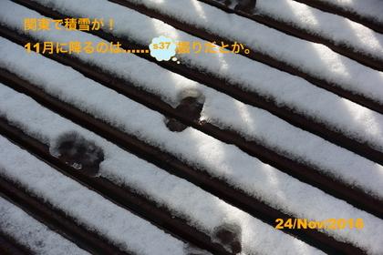 DSC_7190.JPG